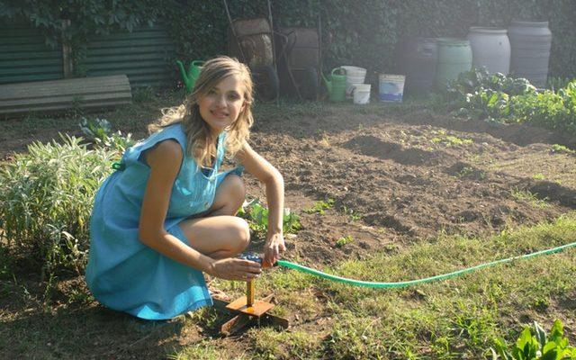 O czym pamiętać zlecając usługi ogrodnicze?